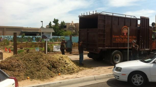 free-mulch